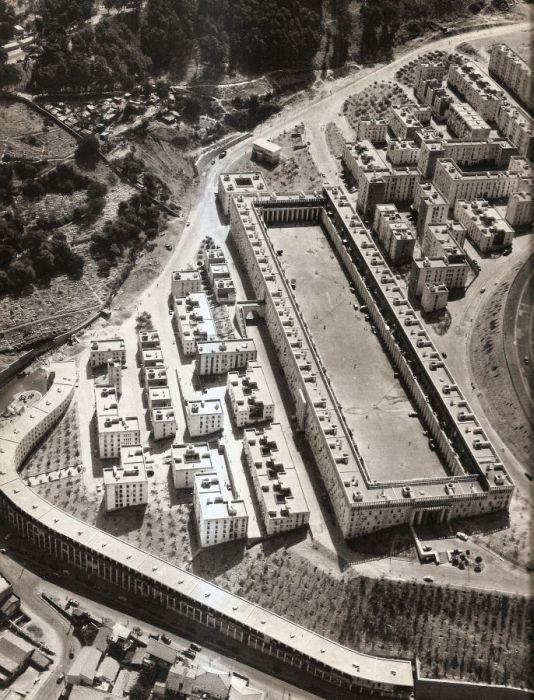 Alger la banlieue