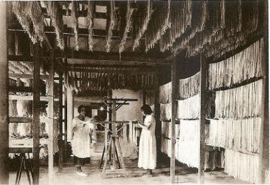 Industrie des pâtes